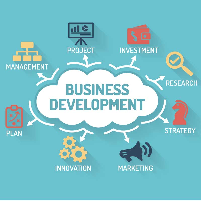 business development consultancy,CodeCL